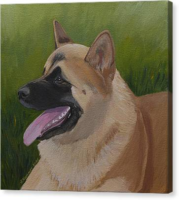 Portrait Of An Akita Canvas Print by Sharon Nummer