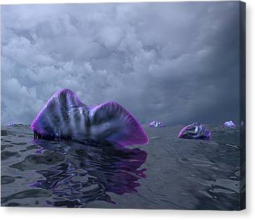 Portuguese Men-of-war, Artwork Canvas Print by Walter Myers