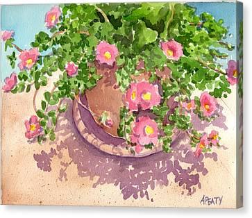 Portulacas Canvas Print