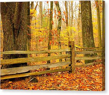 Post And Rail Canvas Print