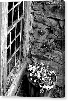 Pots And Panes Canvas Print
