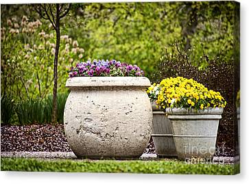 Canvas Print featuring the photograph Pots Of Pansies by Cheryl Davis