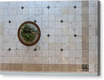 Potted Plant In Foyer Floor From Above Canvas Print by Will & Deni McIntyre