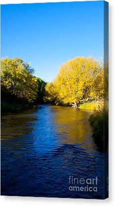Poudre River Canvas Print by Dana Kern