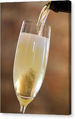 Pouring Champagne Canvas Print by Datacraft Co Ltd