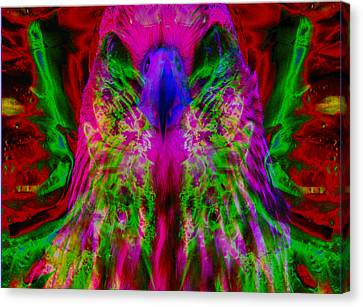 Power Hawk 2 Canvas Print by Colleen Cannon