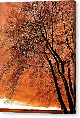 Powerful Morning ... Canvas Print