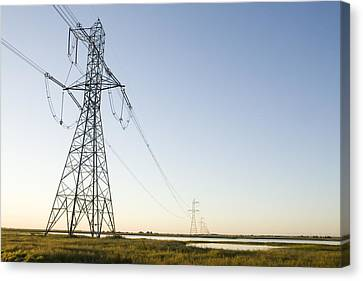 Powerlines Jepson Prairie Preserve Canvas Print by Sebastian Kennerknecht