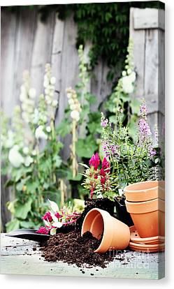 Preparing Flower Pots Canvas Print by Stephanie Frey
