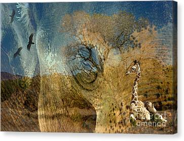 Canvas Print featuring the photograph Preservation by Vicki Pelham