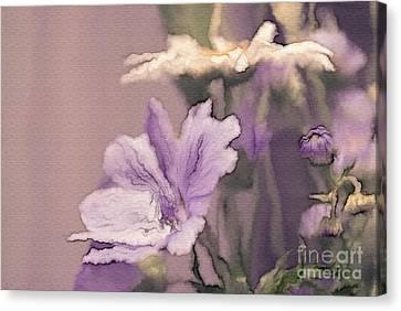 Pretty Bouquet - A05t01 Canvas Print