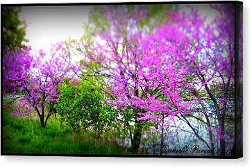 Canvas Print featuring the photograph Pretty In Pink Spring Blossoms by Danielle  Parent
