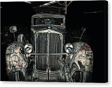 Priceless Rarity Canvas Print by Joachim G Pinkawa