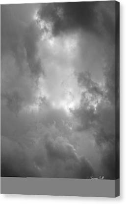 Primordial In Black And White Canvas Print by Suzanne Gaff