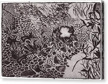 Primrose At Dusk Canvas Print