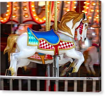 Canvas Print featuring the photograph Prized Stallion by Patrick Witz