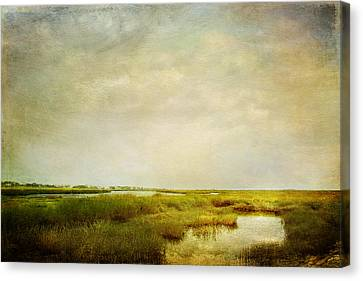 Promise Of Twilight Canvas Print by Karen Lynch