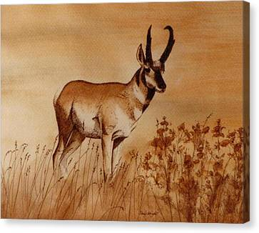 Canvas Print featuring the painting Pronghorn Antelope by Cindy Wright