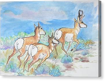 Prongs Canvas Print by Jenn Cunningham