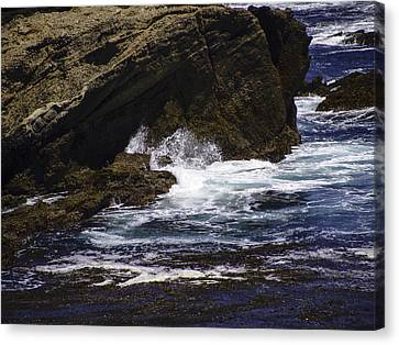 Protected From The Sea Canvas Print by Jo-Anne Gazo-McKim