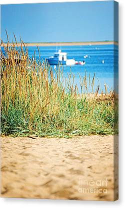 Provincetown Ma Canvas Print by HD Connelly