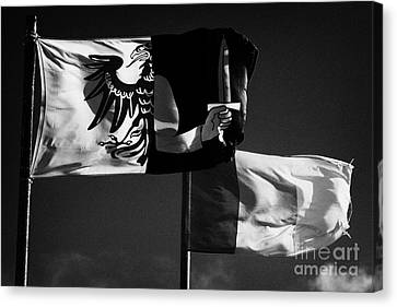 Provincial Connacht And Irish Tricolour Flags Flying In Republic Of Ireland Canvas Print by Joe Fox
