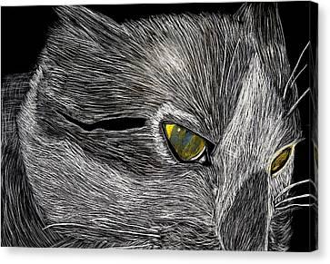 Prowl Canvas Print by Lisa Brandel