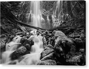 Long Bed Canvas Print - Proxy Falls by Keith Kapple