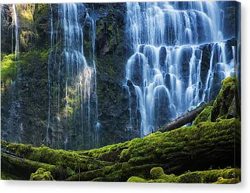 Proxy Falls Canvas Print by Mark Kiver