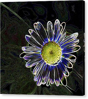 Psychedelic Daisy Canvas Print