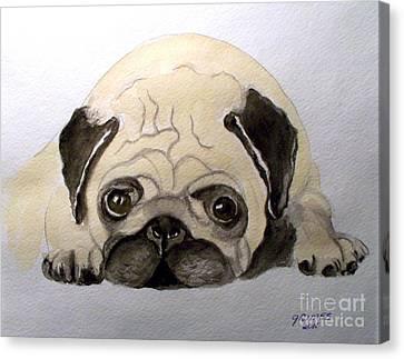 Pug Canvas Print by Carol Grimes