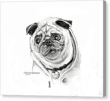 Canvas Print featuring the drawing Pug by Jim Hubbard