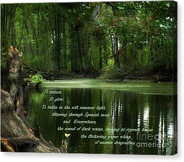 Canvas Print featuring the photograph Pull Of Place by Deborah Smith