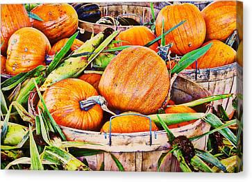 Pumpkin And Corn Combo Canvas Print by Ms Judi