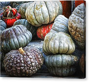 Pumpkin Pile II Canvas Print by Joan Carroll