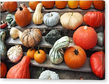 Canvas Print featuring the photograph Pumpkins And Gourds by Brooke T Ryan