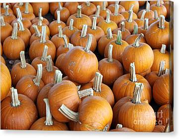 Canvas Print featuring the photograph Pumpkins by Denise Pohl