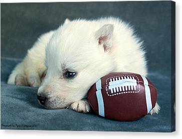 Canvas Print featuring the photograph Puppy With Football by Tyra  OBryant