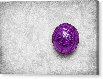 Purple Ball Cat Toy Canvas Print by Andee Design