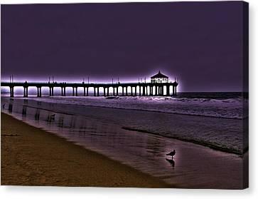 Purple Dawn Canvas Print