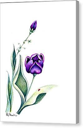 Purple Fantasy Canvas Print by Paula Greenlee