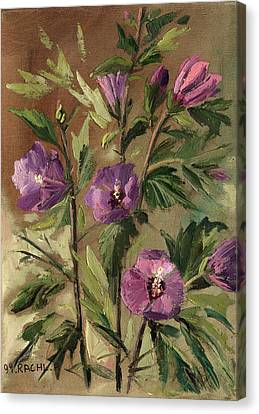 Purple Flowers 2 Canvas Print by Rachel Hershkovitz