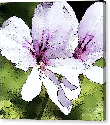 Purple Geranium Canvas Print by Artist and Photographer Laura Wrede