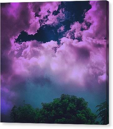 Purple Haze Canvas Print by Cameron Bentley