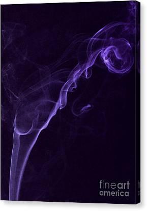Purple Haze Canvas Print by Paul Ward
