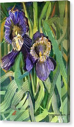 Purple Irises Canvas Print by Mindy Newman