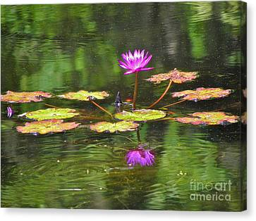 Canvas Print featuring the photograph Purple Lily Pad by Eve Spring