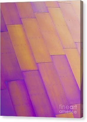 Purple Orange I Canvas Print by Chris Dutton