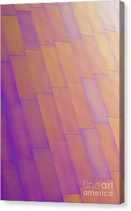 Purple Orange Two Canvas Print by Chris Dutton