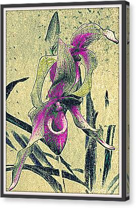 Canvas Print featuring the mixed media Purple Orchid  by Irina Hays